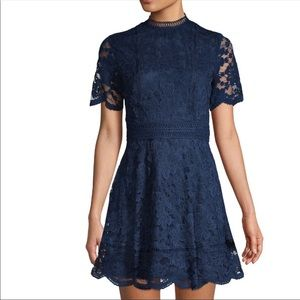 Bb Dakota Navy Blue Lace Fit and Flare Dress
